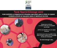 taxe_apprentisage2017